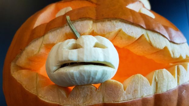 pumpkin-2884745_1280