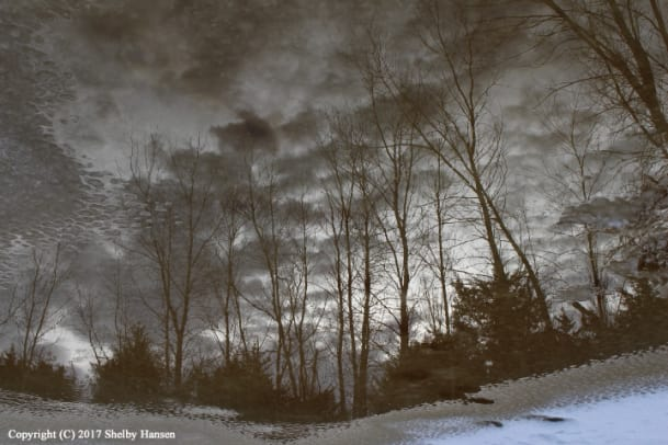 winter nature landscape 3