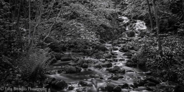 stream by Colin Reynolds Photography