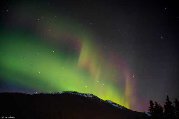 Aurora over Juneau 3